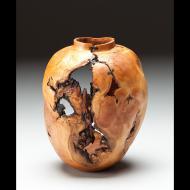 Dan Tilden: Apple Vessel