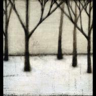 Scott Olson: winter trees black