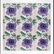 Gail Owen: Purple Anemone