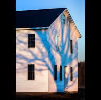 Lee Rentz: BLUE SHADOWS